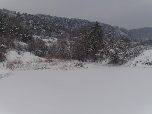 iarna 2011