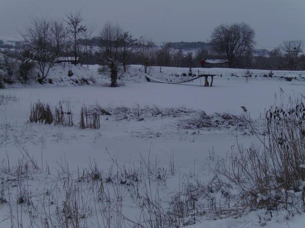 iarna 2011 (3)