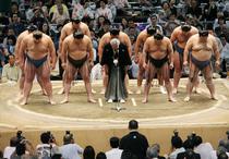 Luptatori de sumo