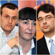 Cristian Preda, Monica Macovei, Sever Voinescu