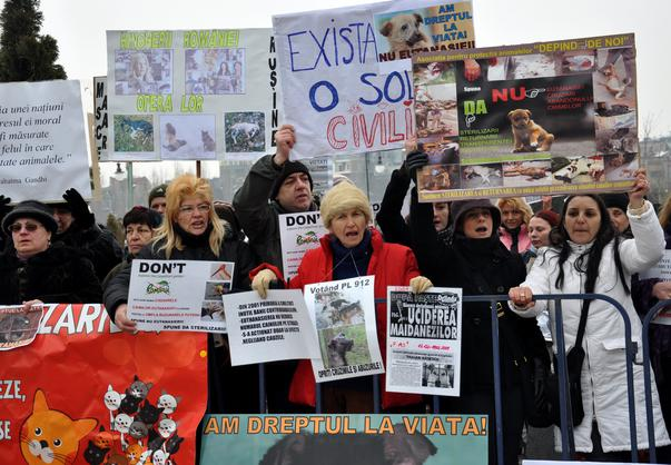 Nu eutanasiei! (2)