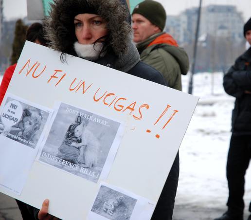 Protest impotriva eutanasierii cateilor