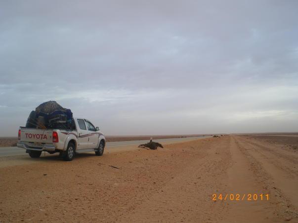 Fuga din Libia (2)