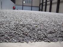 Lucrarea Sunflower Seeds a artistului chinez Weiwei