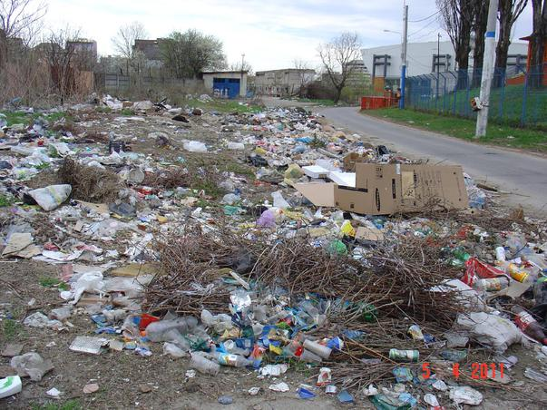 Groapa de gunoi din centrul Craiovei - Oare o fi ecologica si nu ne dam seama ? (2)