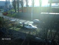 Angajatii stadionului arunca gazonul tuns de pe teren (1)