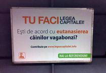 Campanie PDL de promovare a referendumului si a Legii Capitalei