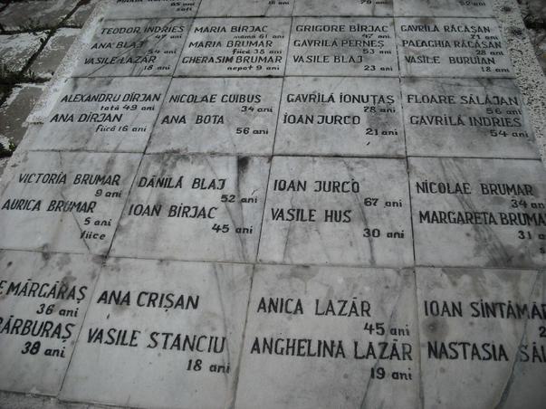 cimitirul martirilor (3)