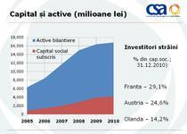 Topul tarilor cu cea mai mare detine de capital in companiile de asigurari din Romania