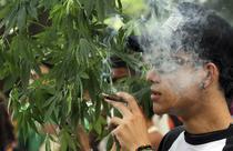 Mars pro-marijuana in Columbia