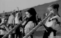 Targul de fete de pe Muntele Gaina (1967)