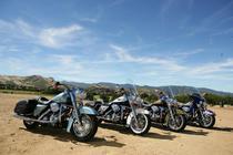 Modele Harley Davidson