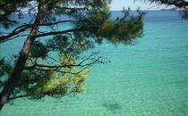 Golden Beach (Thassos)