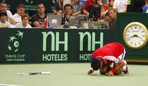 Djokovic, invins de accidentari