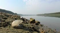 Debit scazut pe Dunare