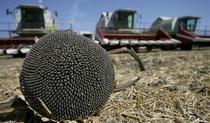 Bomboane agricole