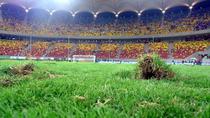Gazonul de pe Arena Nationala dupa meciul Romania vs Franta 0-0