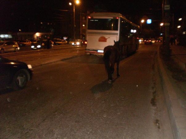 Am pierdut si autobuzul asta...