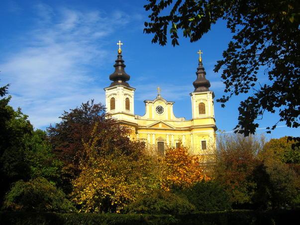 Culorile toamnei - 26 octombrie 2011 (2)