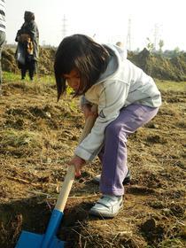 Un copil planteaza un copac