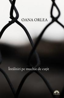 Intalniri pe muchie de cutit, de Oana Orlea