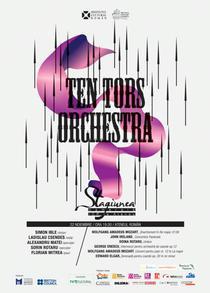 Concert Ten Tors Orchestra