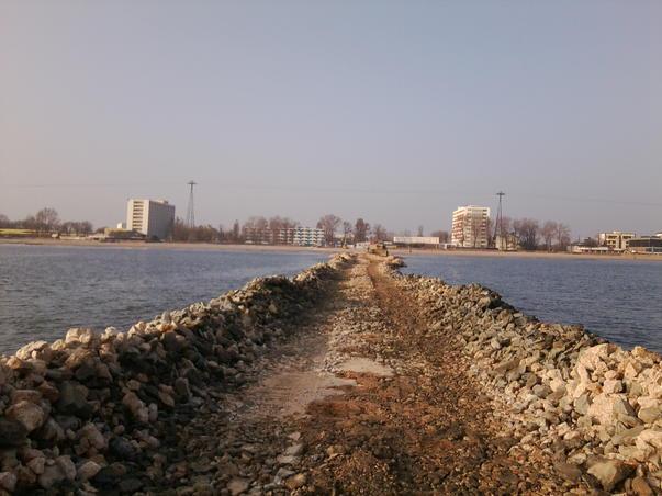 Viitorul port (3)