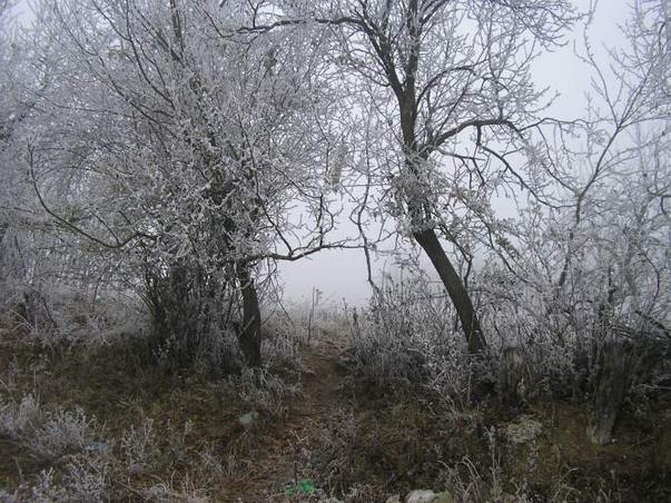 iarna e pe sosite (3)