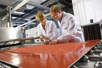 Angajatii BASF lucreaza la un concept car