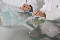 Romania, pe lista potentialelor investitii BASF