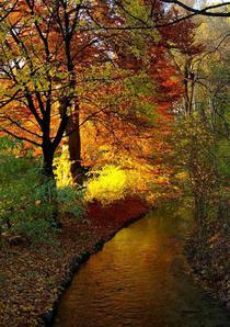 Munchen, Germania