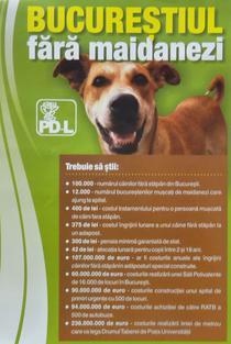 Campanie PDL pentru strangerea de semnaturi anti maidanezi