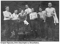 Grupul Ogoranu in Munti