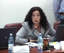 Oana Schmidt Haineala
