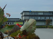 Campus Univeristatea Aalborg 2
