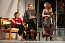 Lamia Beligan, Marius Florea Vizante, Delia Seceleanu in 'Spiritul de familie'