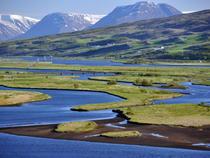 Fiorduri islandeze