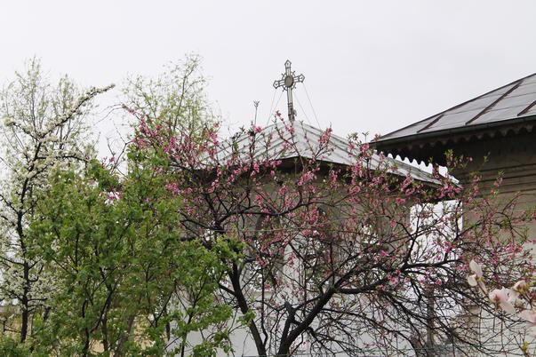 La biserica, de Florii