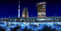 Raul Sumida, luminat de 100.000 de LED-uri