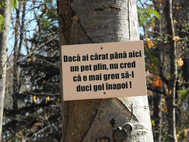 Let`s Do It, Romania