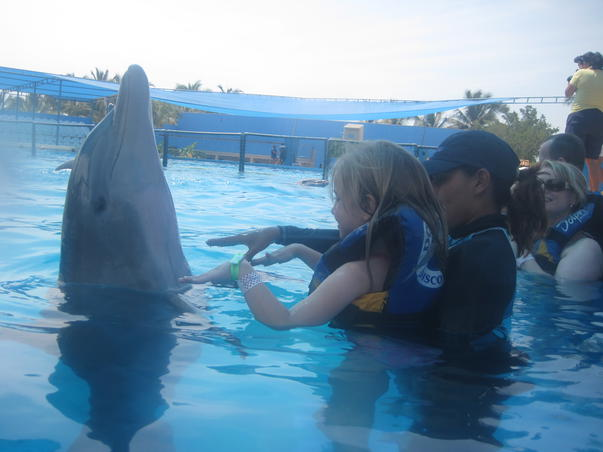 Nostalgii de fotograf: Intalnirea cu delfinii