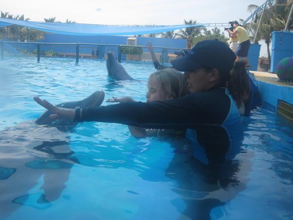 Intalnirea cu delfinii