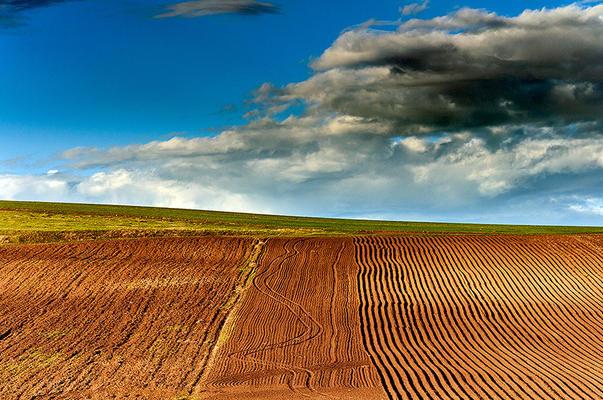 Ultimele tendinte in agricultura