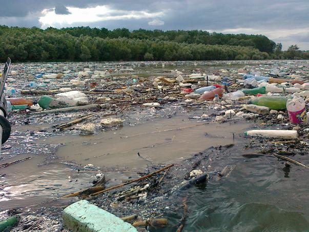 Poluare pe Dunare (la varsarea Ialomitei)