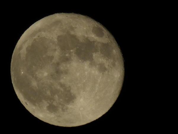 Luna mea