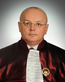 Mircea Stefan Minea