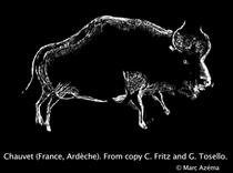 Reprezentarea unui bizon in pestera Lascaux