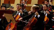 Orchestra Nationala Radio - Foto: Virgil Oprina
