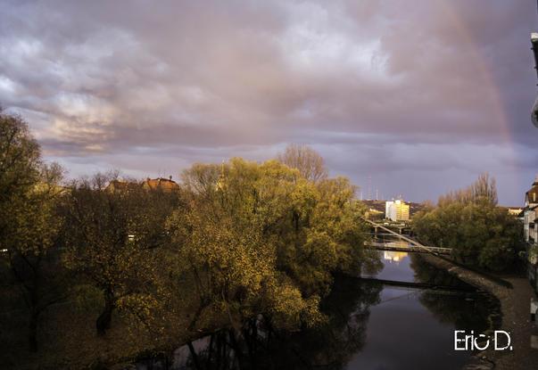 Ciudățenie la Oradea