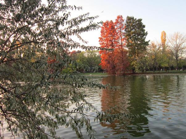 Toamna pe lac